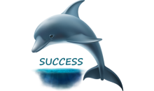 dolphin success